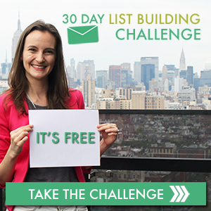 try a 30 day list building challenge